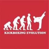 Kickboxing evolution